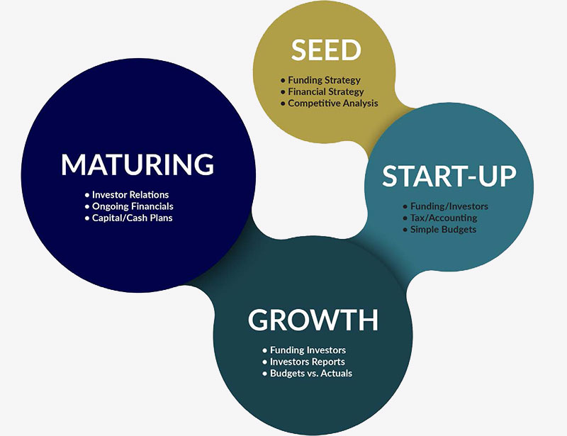 Seed - Funding strategy, Financial strategy, Competitive Analysis; Start-Up - Funding/Investors, Tax/Accounting, Simple Budgets; Growth - Funding Investors, Investors Reports, Budgets vs. Actuals; Maturing - Investor Relations, Ongoing Financials, Capital/Cash Plans.
